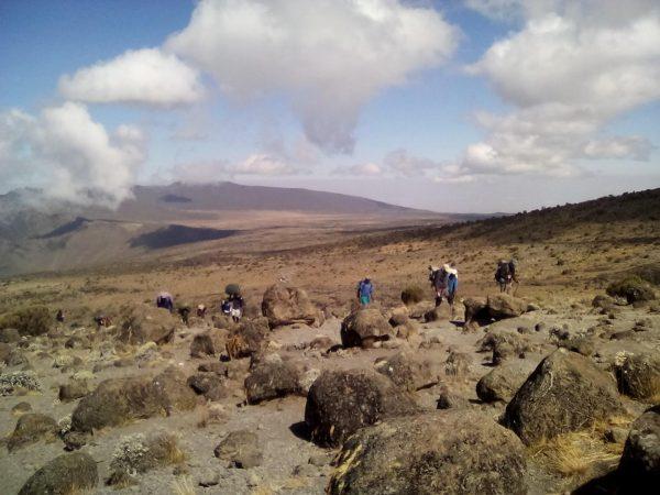 mt. kilimanjaro shiro route